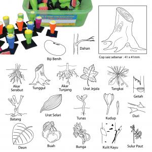 COP KENALI BAHAGIAN POKOK (18 PCS) - ITS Educational Supplies