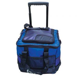 COOL BAG - ITS Educational Supplies Sdn Bhd